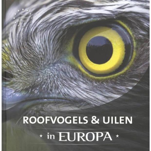 Roofvogels & Uilen In Europa
