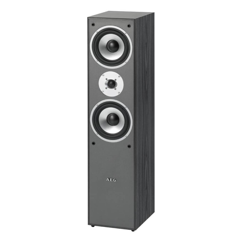 AEG 2-Weg bass reflex luidspreker LB 4711 500 W zwart