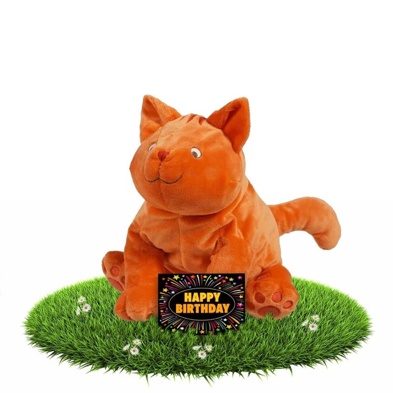 Verjaardag knuffel Dikkie Dik 30 cm met gratis verjaardagskaart