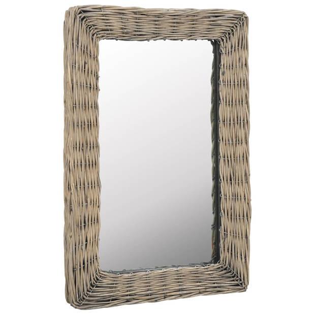 vidaXL Spiegel 40x60 cm wicker bruin