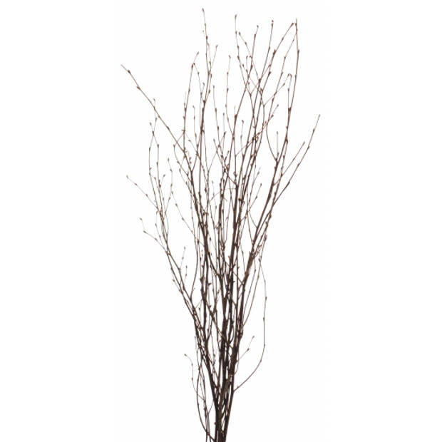 10x Bruine paastakken 75 cm berkentakken/kunsttakken - Pasen versieringen/decoraties
