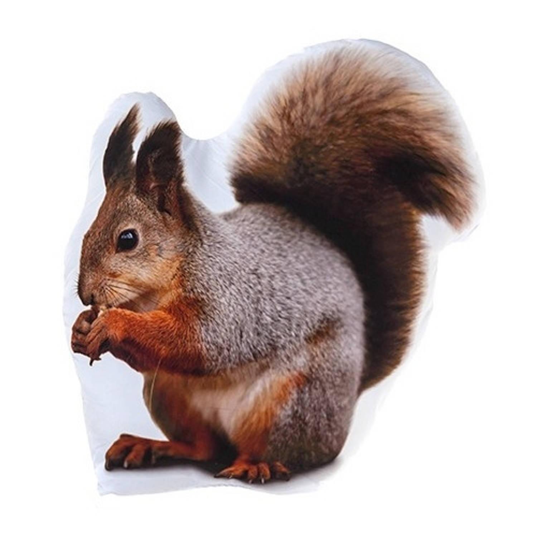 Kamparo kussen bosdieren: eekhoorn 62 cm