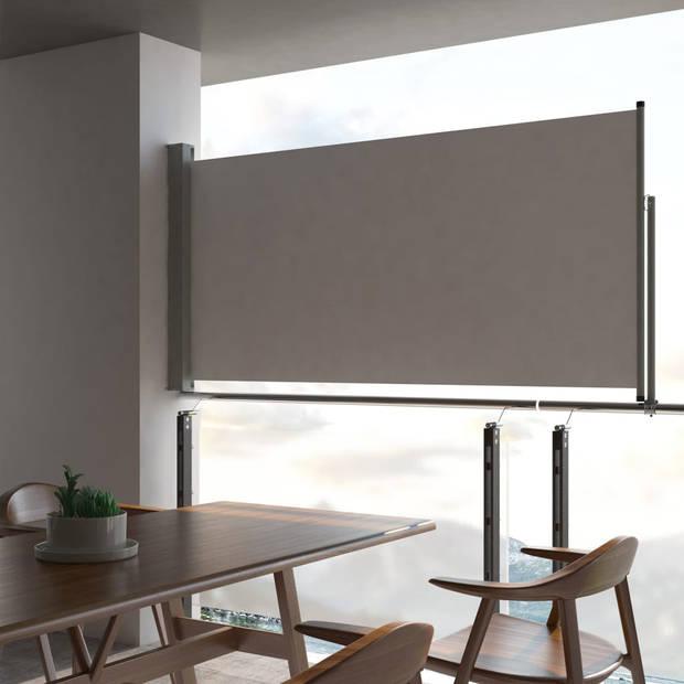 vidaXL Zijluifel uittrekbaar 120x300 cm grijs