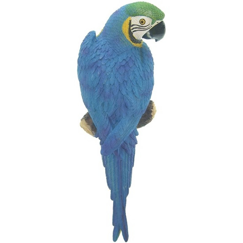 Dierenbeeld Blauwe Ara Papegaai Vogel 31 Cm Tuinbeeld Hangdecoratie Tuindecoraties Dierenbeelden