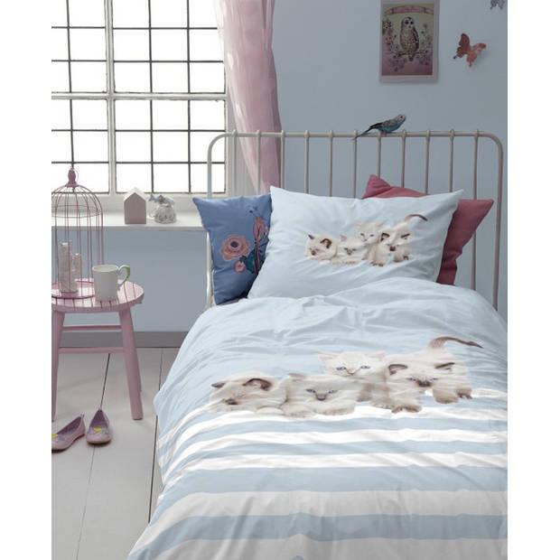 Cinderella Kids Dekbedovertrek Cute Kittens - Blauw - 1-Persoons 140x200 cm