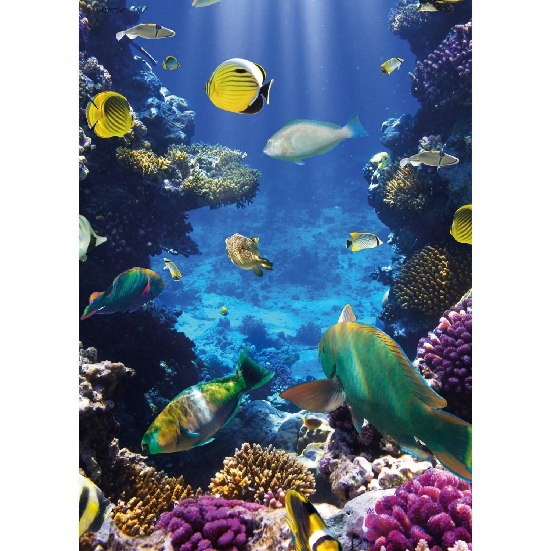 Tuinschilderij Underworld Coral 70x130cm