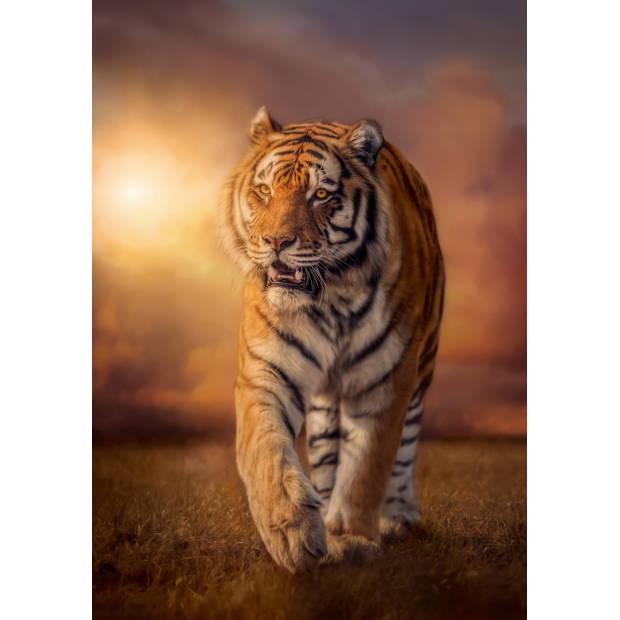 Clementoni puzzel tijger 1500 stukjes