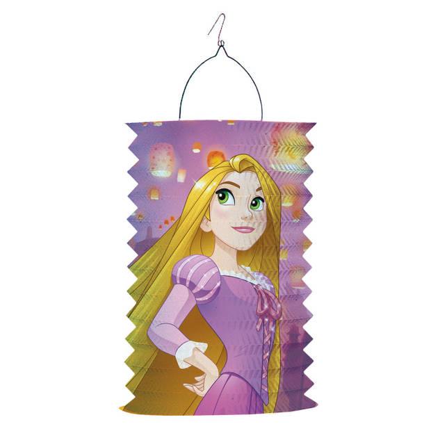 Amscan lampion Disney Princess 28 cm roze