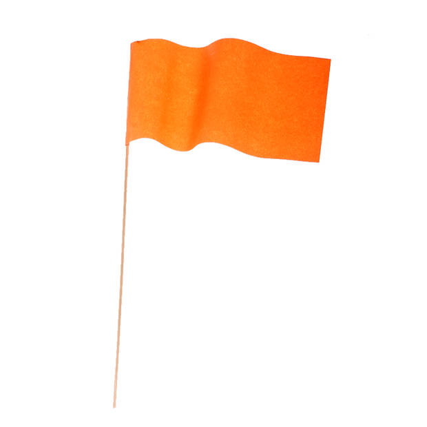 Oranje Koningsdag feestpakket met versiering en decoratie - ballonnen / slingers / vlaggetjes