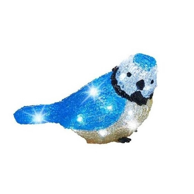 Kerstverlichting figuren voor buiten Verlichte blauwe vogel LED 20 lampjes 22 cm Koel wit