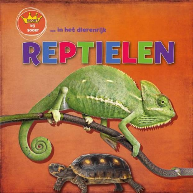 Reptielen - Soort Bij Soort In Het Dierrenrijk