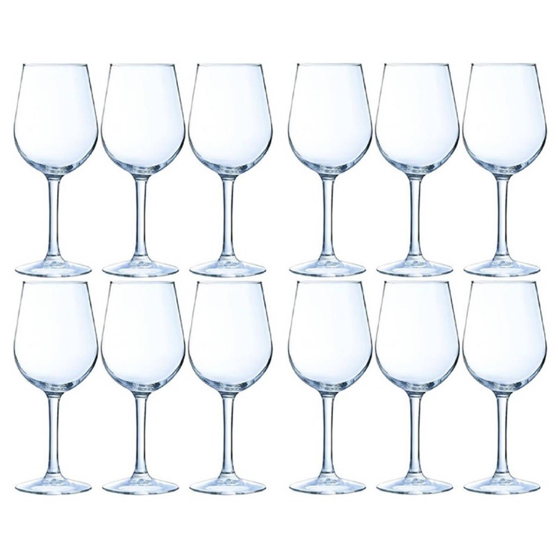 12x Luxe Wijnglazen Voor Witte Wijn 270 Ml - 27 Cl - Witte Wijn En Rose Glazen - Wijn Drinken - Wijnglazen Van Glas