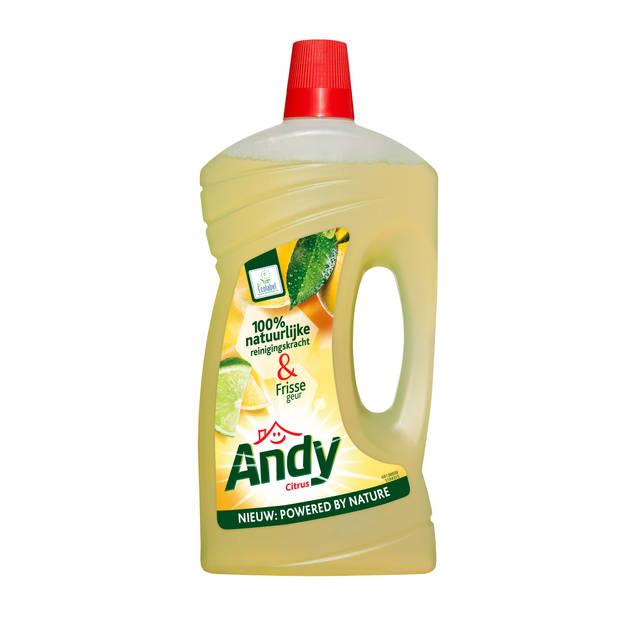 Andy Allesreiniger Citrus 1 Liter