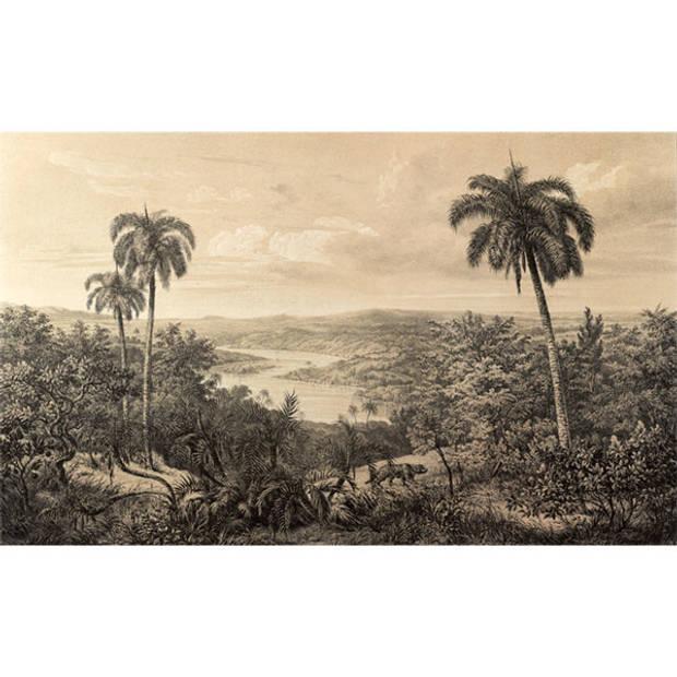Schilderij Vintage Jungle