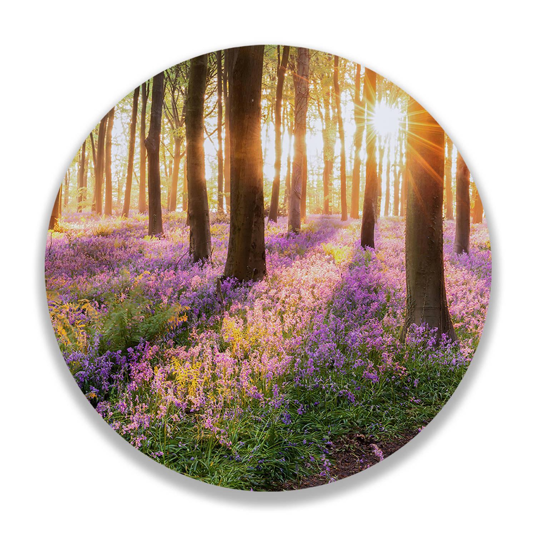 Wandcirkel Bloemen In Het Bos