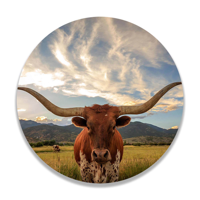 Wandcirkel Texas Longhorn