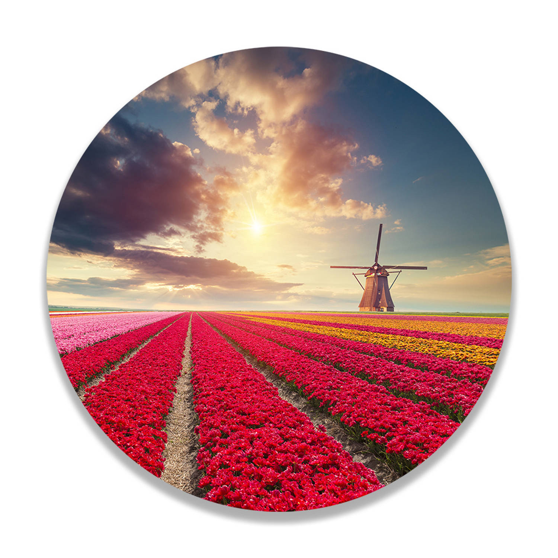 Wandcirkel Hollands Tulpenveld