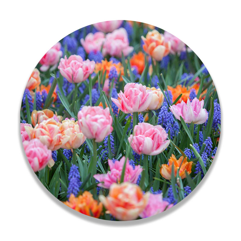Wandcirkel Vrolijke Voorjaarsbloemen