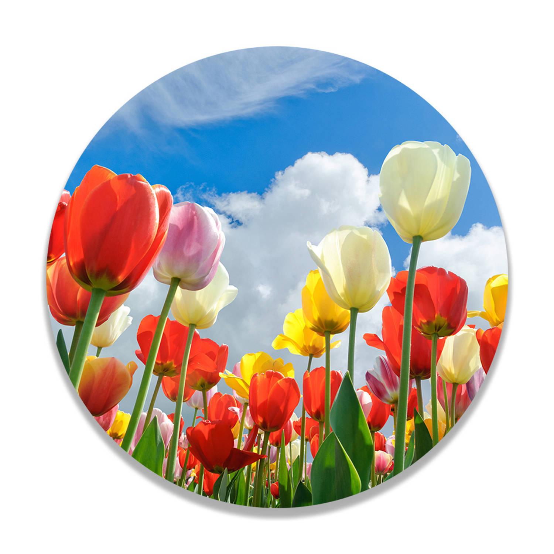 Wandcirkel Vrolijke Tulpen