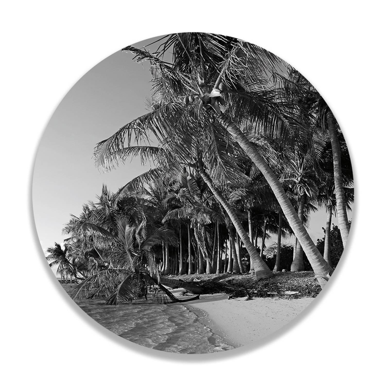 Wandcirkel Palm Trees