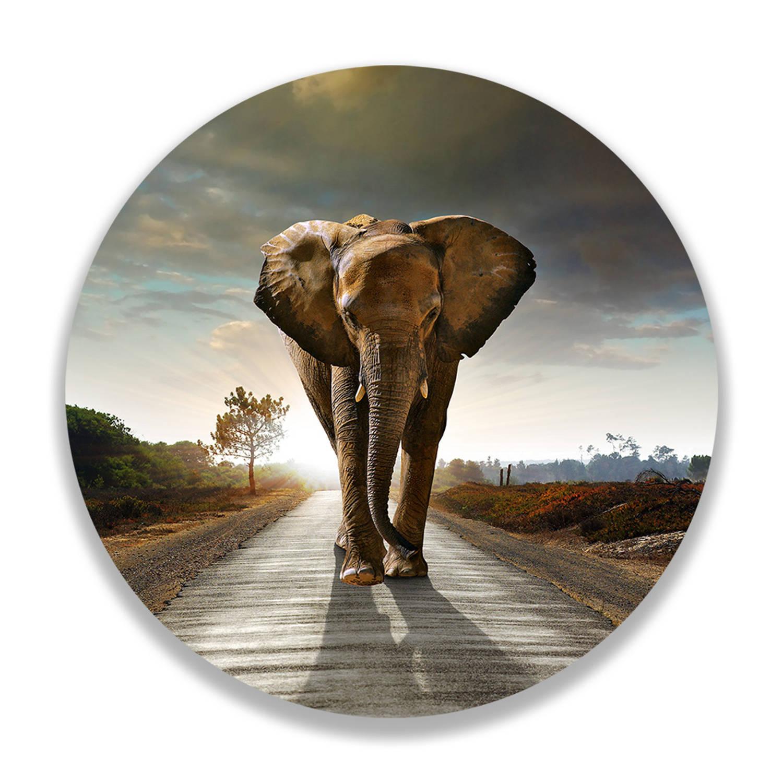 Wandcirkel Walking Elephant