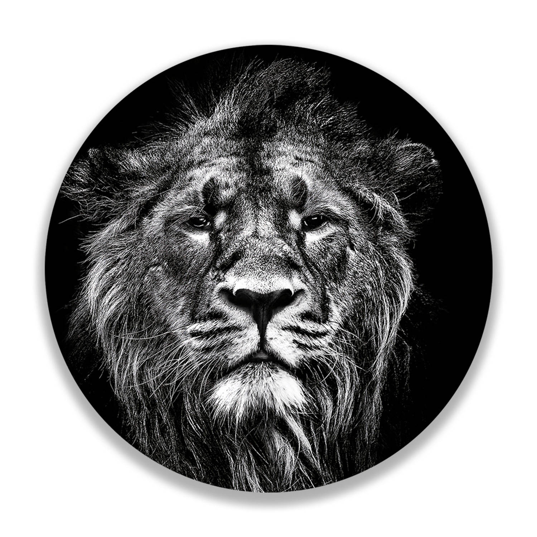 Wandcirkel Impressive Lion