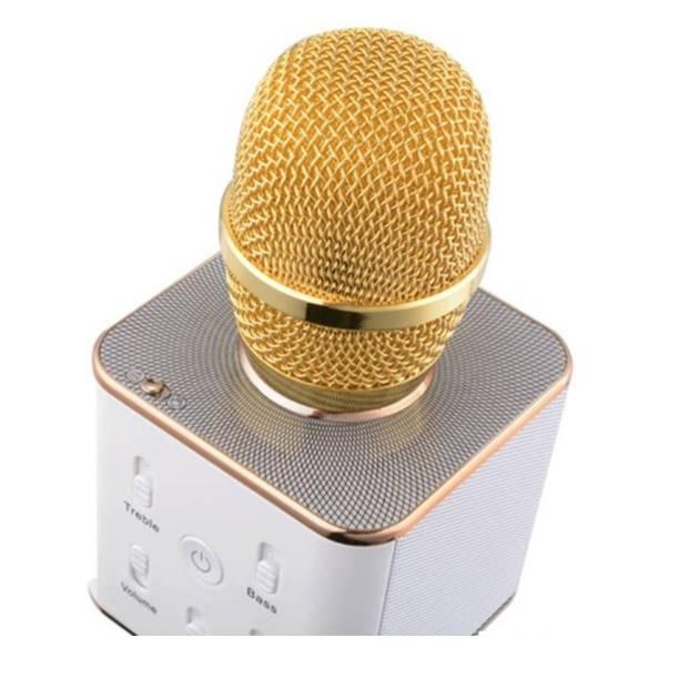 Parya - Karaoke Microfoon - bluetooth