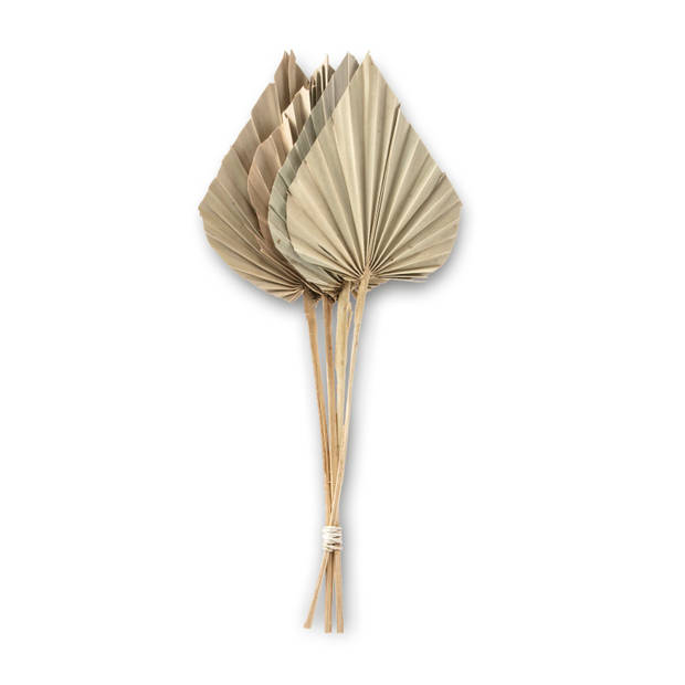 Kunstbloem Palmspear - S/4