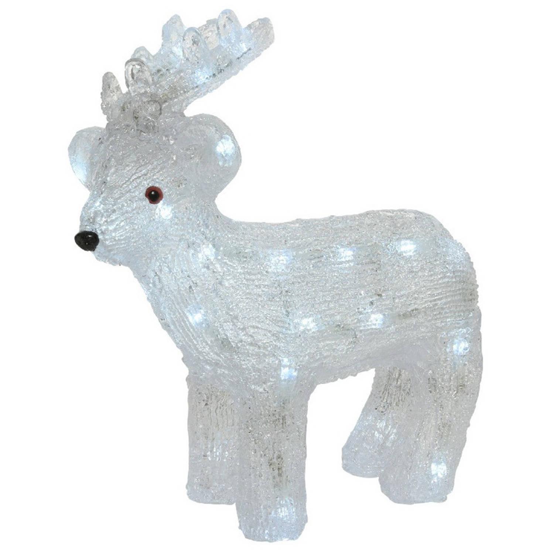 Kerstverlichting figuren voor buiten Verlichte rendier LED 30 lampjes 31 cm Koel wit