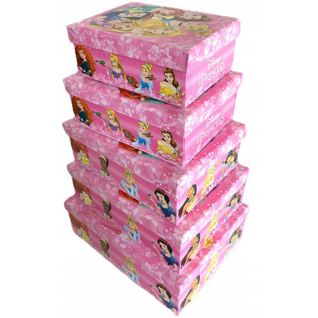 Disney opbergdozen Prinsessen meisjes roze 5 stuks