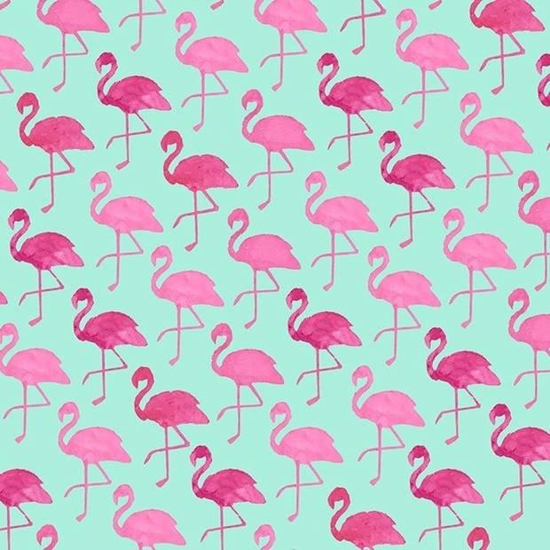 2x Inpakpapier met flamingo motief 200 x 70 cm op rol - cadeaupapier