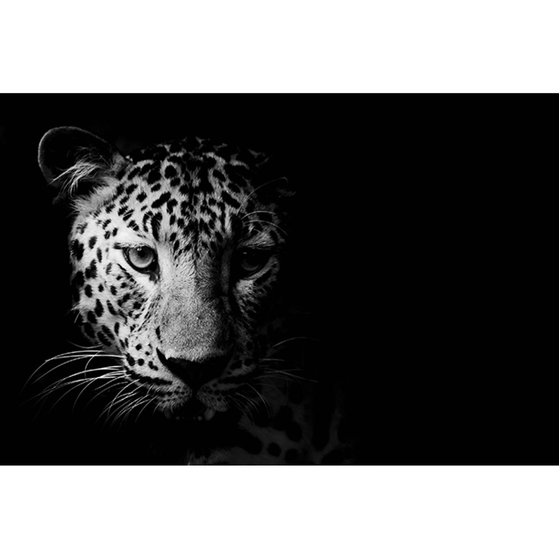 Schilderij Zwart Wit Luipaard