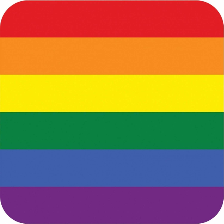 100 Stuks Bierviltjes Regenboog Thema Print - Rainbow Feestartikelen/versiering