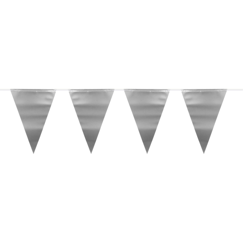Feestbazaar Vlaggenlijn Zilver Metallic Mat (6m) online kopen