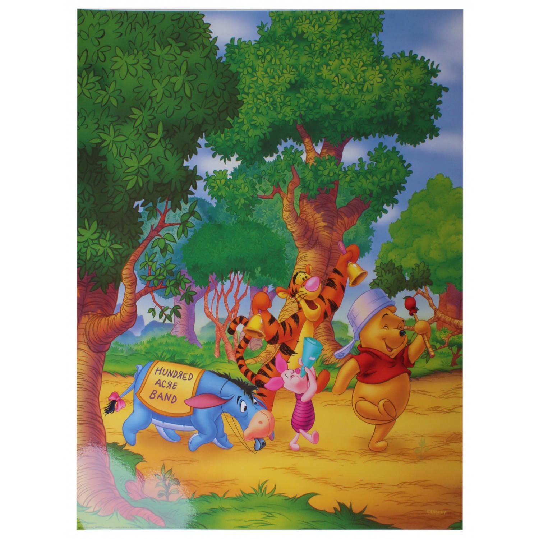 Disney Poster Hundred Acre Band Junior 50x40 Cm Papier