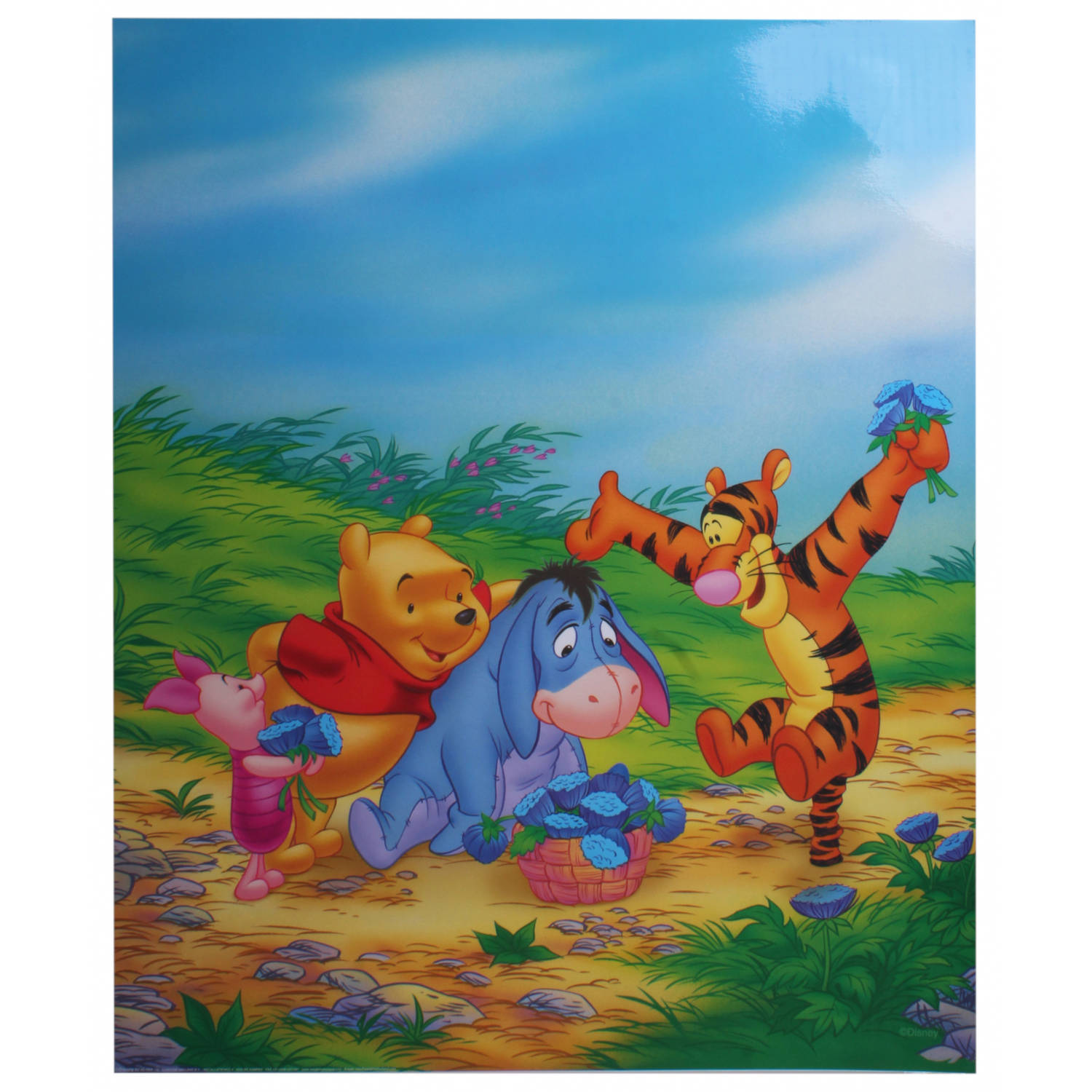 Disney Poster Winnie Bloemen Junior 50x40 Cm Papier