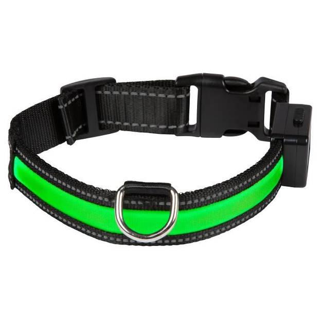 EYENIMAL Lichthalsband Lichthalsband USB Oplaadbaar L - Groen - voor honden