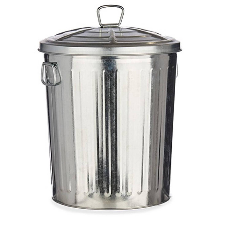Vuilnisbak/vuilnisemmer Zilver Met Deksel 25 Liter 48 Cm Metaal - Prullenbakken