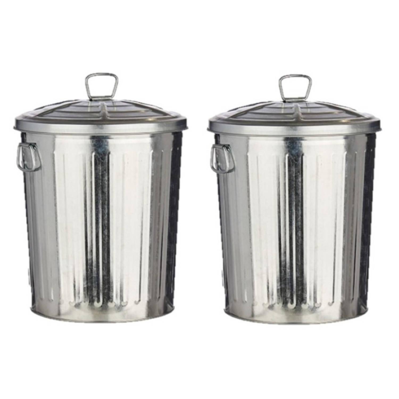 2x Stuks Vuilnisbakken/vuilnisemmers Zilver Met Deksel 25 Liter 48 Cm Metaal - Prullenbakken